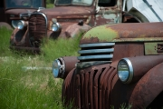 <h5>Ford and Chevy Trucks</h5>